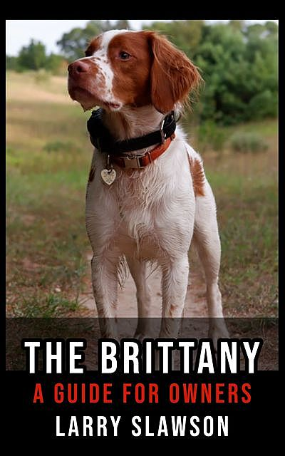 The Brittany, Larry Slawson