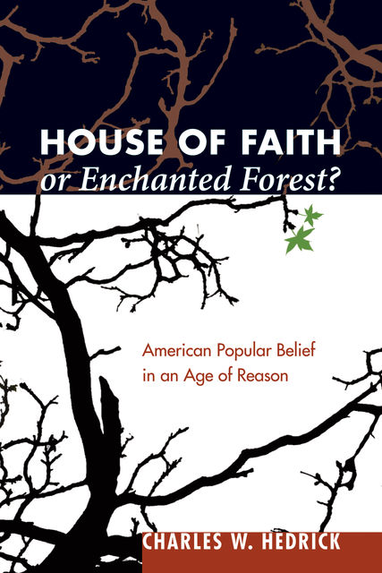 House of Faith or Enchanted Forest, Charles W. Hedrick