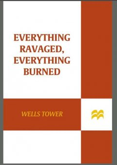 Everything Ravaged, Everything Burned: Stories, Wells Tower