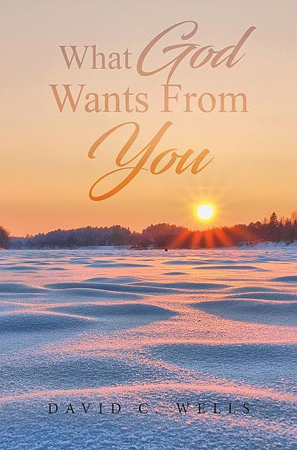 What God Wants From You, David Wells