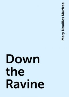 Down the Ravine, Mary Noailles Murfree