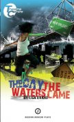 The Day The Waters Came, Lisa Evans