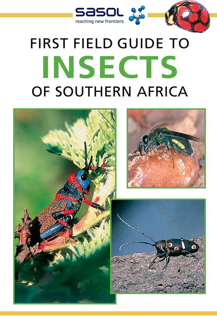 First Field Guide to Insects of Southern Africa, Alan Weaving