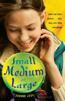Small Medium at Large, Joanne Levy