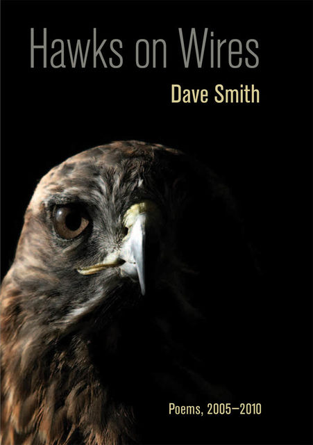 Hawks on Wires, Dave Smith