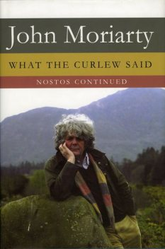 What the Curlew Said, John Moriarty