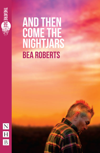And Then Come The Nightjars (NHB Modern Plays), Bea Roberts
