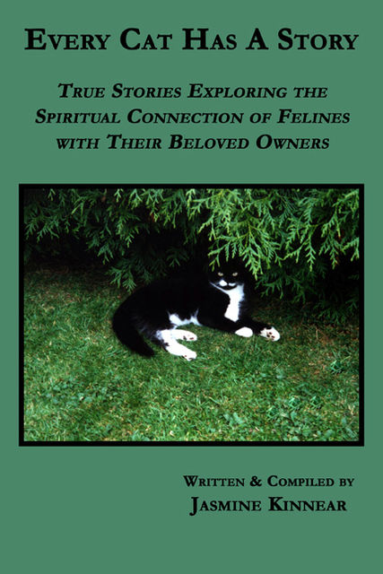 Every Cat Has A Story: True Stories Exploring the Spiritual Connection of Felines with Their Beloved Owners, Jasmine Kinnear