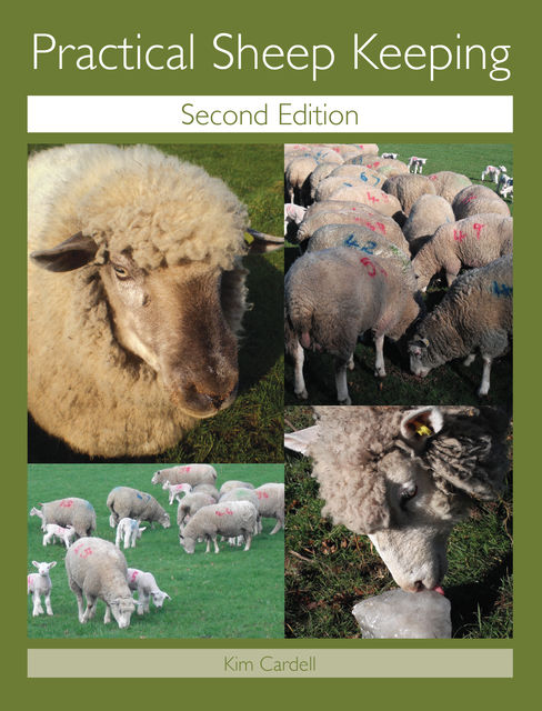 Practical Sheep Keeping, Kim Cardell