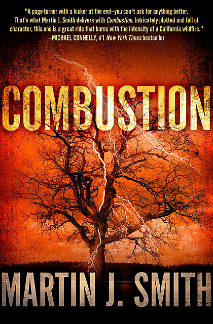Combustion, Martin J.Smith
