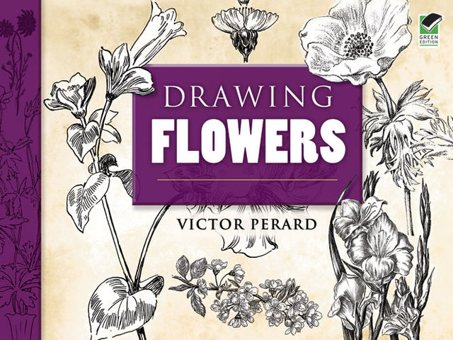 Drawing Flowers, Victor Perard