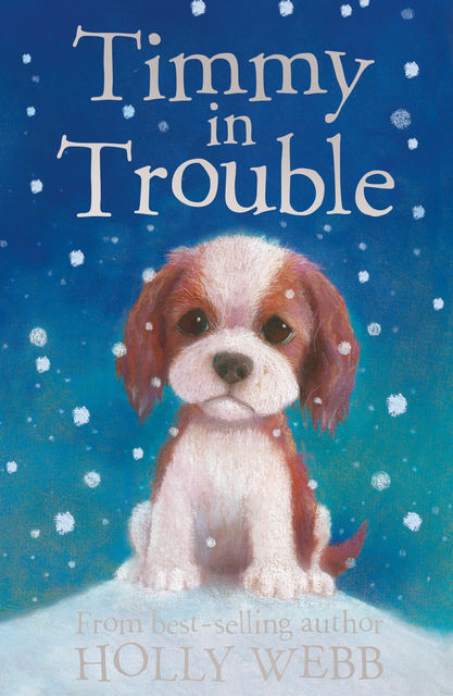 Timmy in Trouble, Holly Webb