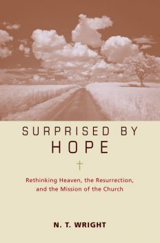 Surprised by Hope Participant's Guide, N.T.Wright