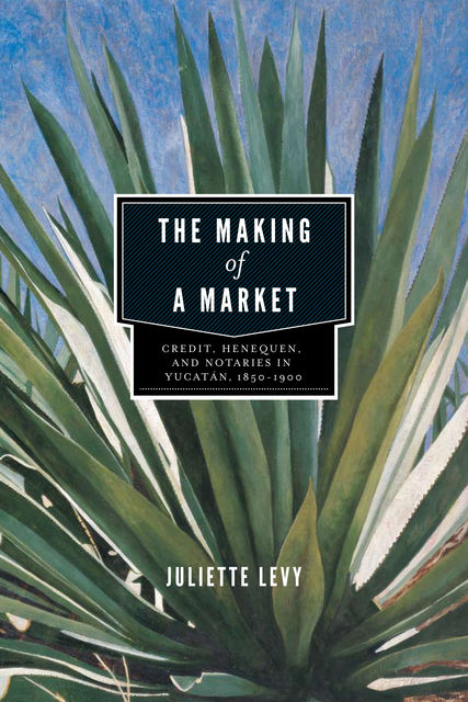The Making of a Market, Juliette Levy