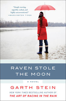 Raven Stole the Moon, Garth Stein