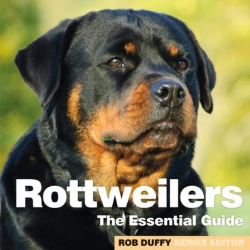 Rottweilers,
