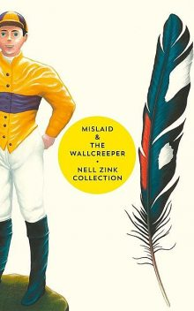 Mislaid & The Wallcreeper, Nell Zink
