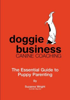 Doggie Business Canine Coaching, Suzanne Wright