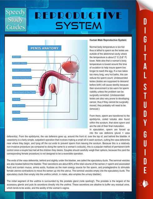 Reproductive System (Speedy Study Guides), Speedy Publishing