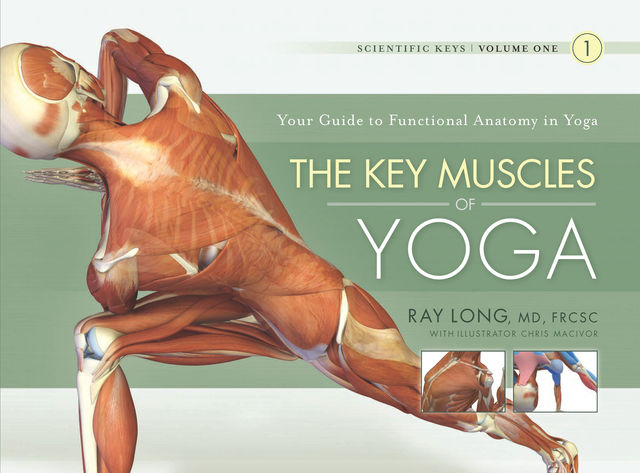 The Key Muscles of Yoga, Ray Long