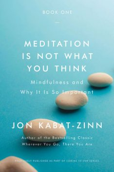 Meditation Is Not What You Think, Jon Kabat-Zinn