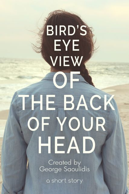 Bird's-Eye View of the Back of Your Head, George Saoulidis