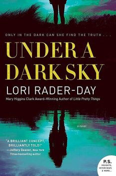 Cover of Darkness, Lori Rader-Day