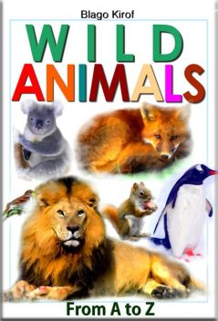 Wild Animals From A to Z, Blago Kirof