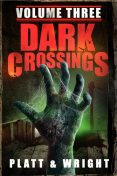 Dark Crossings, David Wright, Sean Platt