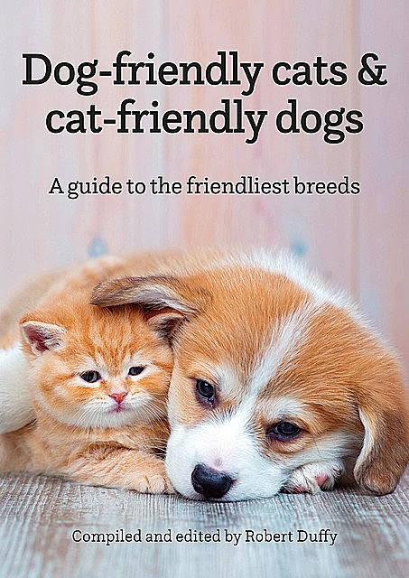 Dog-friendly cats & cat-friendly dogs,