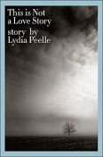 This is Not a Love Story, Lydia Peelle