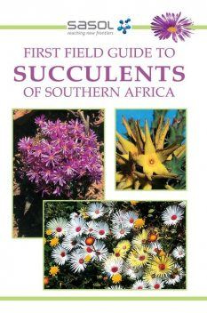 First Field Guide to Succulents of Southern Africa, John Manning