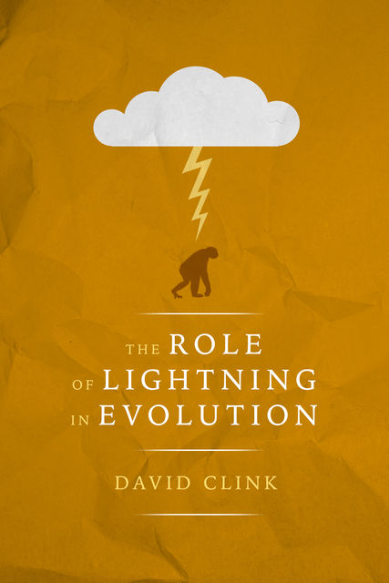 The Role of Lightning in Evolution, David Clink