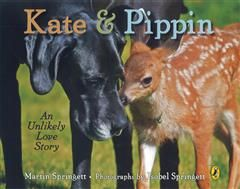 Kate And Pippin, Martin Springett