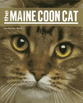 The Maine Coon Cat, Liza Gardner Walsh