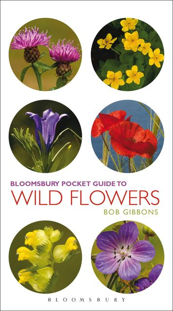 Pocket Guide To Wild Flowers, Bob Gibbons