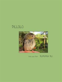 Piccolo – deutsche Version, Blimunda Bli