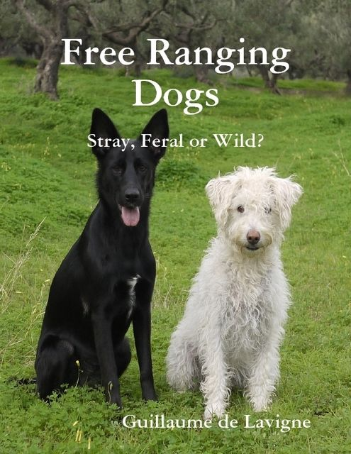 Free Ranging Dogs: Stray, Feral or Wild?, Guillaume de Lavigne