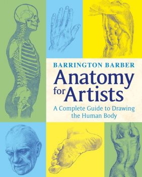 Anatomy for Artists, Barrington Barber