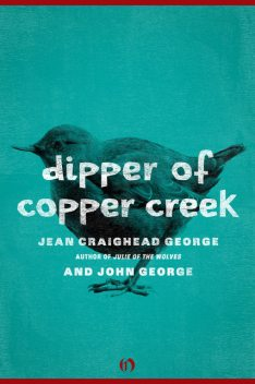 Dipper of Copper Creek, George John, Jean Craighead George
