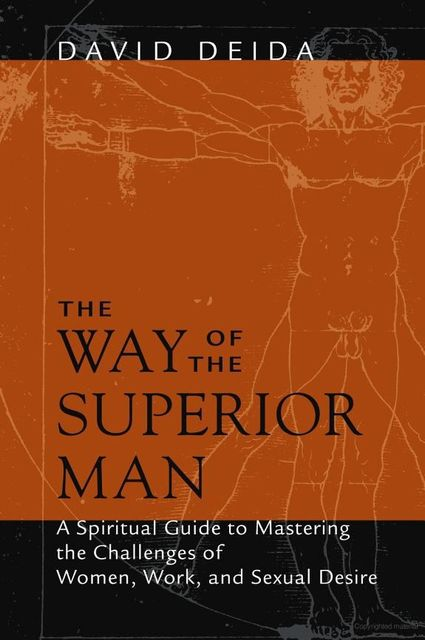 The Way of the Superior Man: A Spiritual Guide to Mastering the Challenges of Women, Work, and Sexual Desire, David Deida
