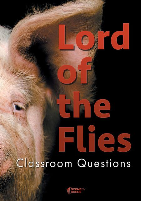 Lord of the Flies Classroom Questions, Amy Farrell