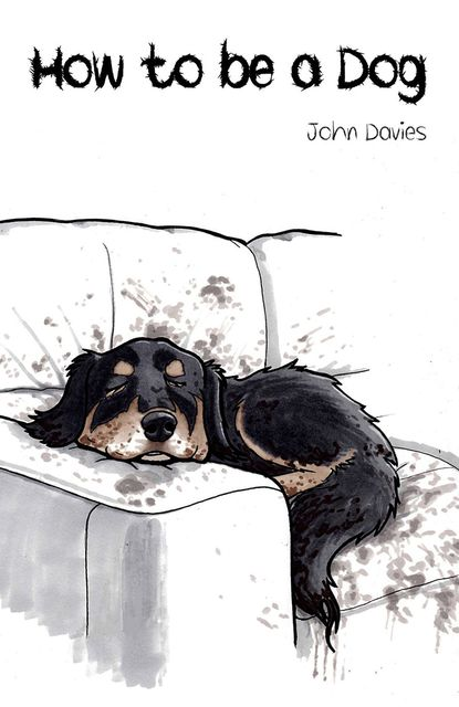 How to be a Dog, John Davies