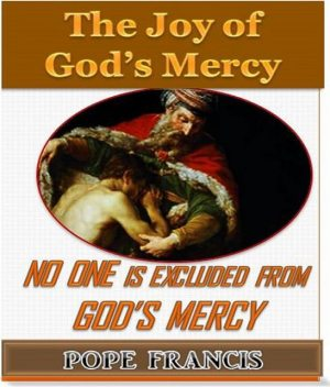 No One is Excluded from God's Mercy, Pope Francis