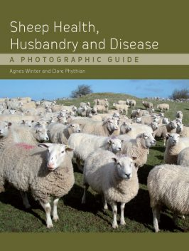 Sheep Health, Husbandry and Disease, Agnes C Winter, Clare Phythian