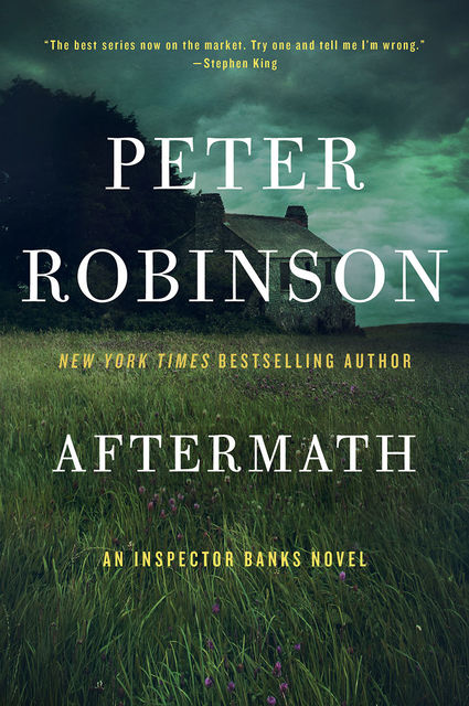 Aftermath, Peter Robinson