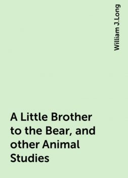 A Little Brother to the Bear, and other Animal Studies, William J.Long