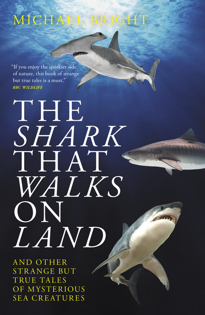 The Shark that Walks on Land, Michael Bright