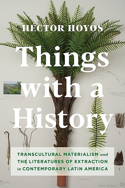 Things with a History, Héctor Hoyos