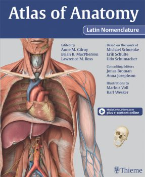Atlas of Anatomy Latin Nomenclature version, Gilroy Anne, Brian R MacPherson, Lawrence M Ross